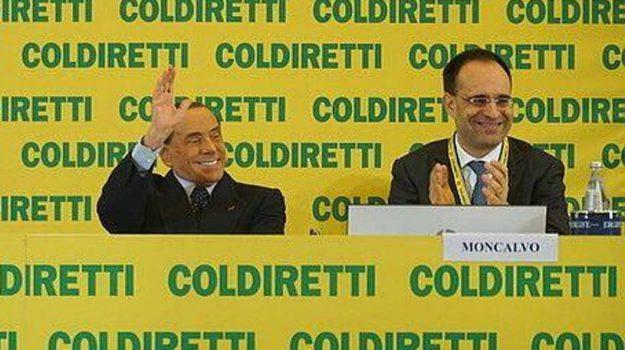 elezioni politiche 2018, forza italia, piano marshall sicilia, Ponte sullo Stretto, Silvio Berlusconi, Sicilia, Politica
