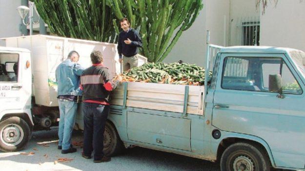 venditori ambulanti licata, Agrigento, Cronaca