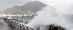 Alberi abbattuti e verande pericolanti, danni per lo scirocco tra Palermo e il Trapanese
