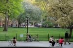 Parchi e musei, luoghi meditazione a NY