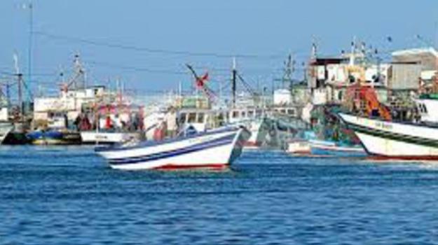 contributi pesca, Sciacca, truffe, Agrigento, Cronaca