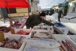 Pesca: Consiglio inizia esame piano Med occidentale