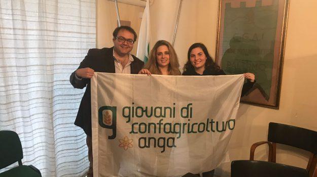 giovani confagricoltura, Palermo, Economia