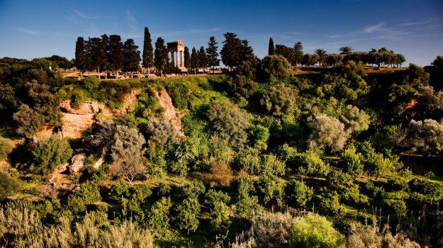 Giardino della Kolymbethra agrigento, Agrigento, Cultura
