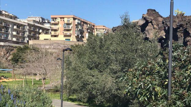 vandali parco gemmellaro catania, Catania, Cronaca