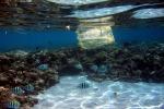 Paesi sul Mediterraneo alleati contro plastiche in mare