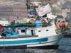 Via libera a pesca del cicirello e rossetto in Sicilia