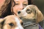 Strage dei cani a Sciacca, prime richieste d'adozione per i cuccioli sopravvissuti