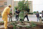 Trapani, al via il servizio civico per la cura del verde