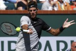 Federer spreca tre match point, del Potro nuovo re di Indian Wells