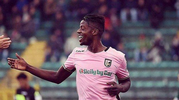 calcio serie b, palermo calcio, palermo frosinone, Palermo, Qui Palermo