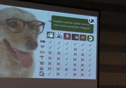 Lo scrub, il servizio per i cani e la App per la Sanità. Ecco il nostro futuro sostenibile