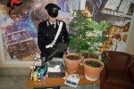 Coltivava marijuana in casa, arrestato giovane di Ragusa