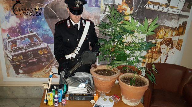 marijuana ragusa, Ragusa, Cronaca