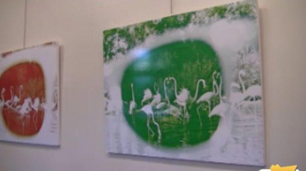 Alla galleria Li Art di Palermo la mostra di Max Laudadio