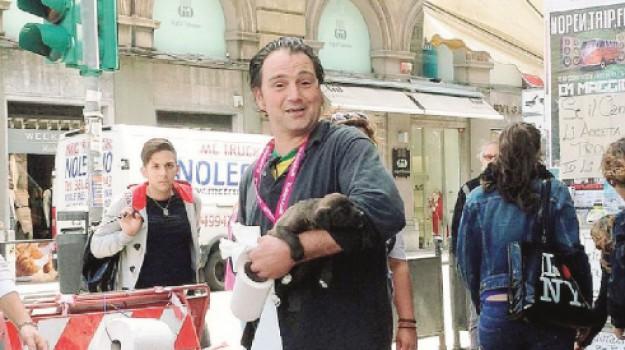 truffa adozioni cani palermo, Nino Spina, Palermo, Cronaca