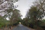 Palermo, 5 km di cavi di rame rubati: 80 punti luce spenti, la Favorita al buio