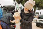 Bianca Franz con uno dei cani abbandonati