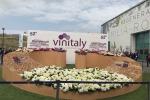 Vino: imprenditore, Umbria ha bisogno famiglie importanti