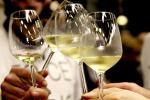 Vinitaly: Coldiretti,record export dalle Marche a 52 milioni