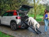 Citroën, arriva pet à porter: il kit per i fido a bordo
