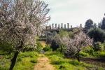 Polemica sulla guida di Agrigento, la replica della Feltrinelli