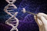 Scoperta la causa di grave encefalopatia, è mutazione gene
