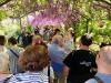 In tanti per Festa del glicine Firenze
