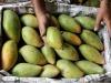 Frutta e verdure, italiani insoddisfatti del sapore
