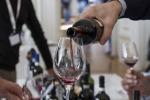 Agricoltura, 13 milioni di euro per le aziende vitivinicole siciliane