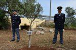 A Capaci un albero in memoria del commissario Luigi Calabresi