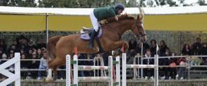 """A Buseto Palizzolo """"Segesta Cavalli 2018"""", un weekend dedicato all'equitazione"""