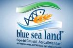 Sicilia protagonista dell'edizione 2018 di 'Blue Sea Land'