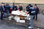 Palermo, controlli a Brancaccio e allo Sperone: raffiche di multe e sequestri