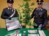 Una serra di marijuana in casa, arrestato 21enne a Baucina