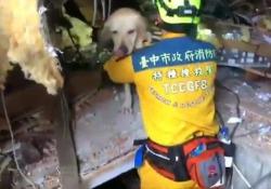 Il terremoto a Taiwan