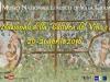 A Villa Giulia Giornate di olio e vino