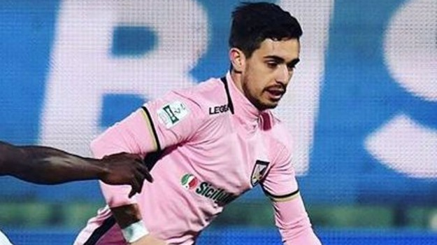 palermo calcio, palermo cremonese, serie b, Palermo, Qui Palermo