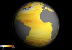 Lo dimostrano i dati dei satelliti della Nasa