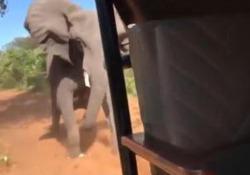 Il video è stato girato nel Parco nazionale di Chobe, in Botswana