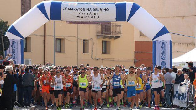 Grand prix sicilia di maratonine, maratonina città del vino marsala, Trapani, Sport