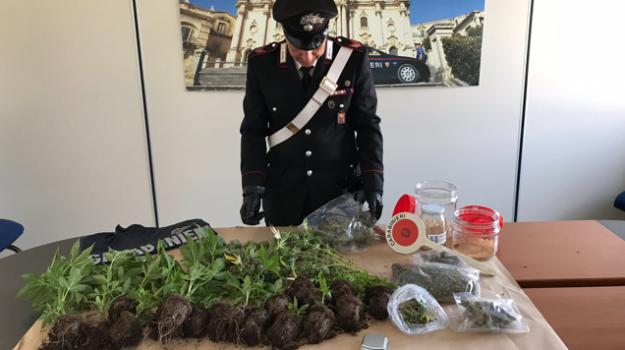 Marijuana Modica, Emanuele Modica, Ragusa, Cronaca