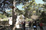 Riapre il parco di Bonifato ad Alcamo, si inaugura la nuova stagione turistica