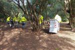 Palermo, dopo Pasquetta operai in azione alla Favorita per ripulire il parco