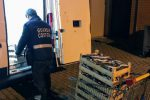 Sequestrati 110 chili di pesce privo di tracciabilità a Trapani, multe per 10 mila euro