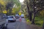 Palermo, lavori in corso nel Parco della Favorita per la pista ciclabile: traffico in tilt