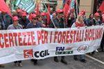 Consorzi di bonifica e forestali, oltre 5mila in piazza: mercoledì di passione a Palermo