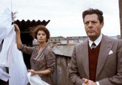 «Una giornata particolare», 40 anni fa il film cult di Ettore Scola