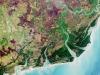 Il delta del fiume Zambesi (fonte: modified Copernicus Sentinel data (2016), processed by ESA, CC BY-SA 3.0 IGO)