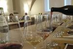 Volcanic Wines,presto marchio Vini dei vulcani e carta suoli